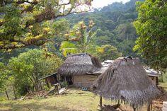 """Las casas de los campesinos y los indios en los bordes de las zonas selváticas son el único """"desarrollo"""" humano que encontré en la travesía."""