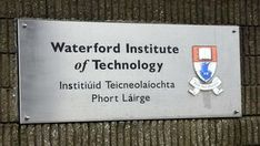 Waterford researchers developing brain implant to treat epilepsy seizures before they happen Epilepsy Seizure, Seizures, Brain, Shit Happens, The Brain