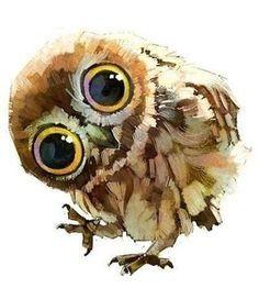 Illustrations by Chinese Duo Xue Wawa #owl   best stuff
