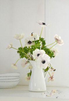 Anemone arrangement perfect for the kitchen. Corner Deco, Flowers For Algernon, Little White House, White Anemone, Deco Floral, Art Floral, Flower Making, Decoration, Planting Flowers