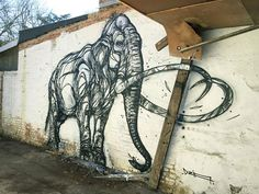 Le street art animalier de Dzia  2Tout2Rien