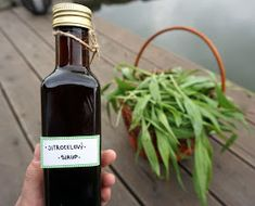 Whiskey Bottle, Herbalism, Homemade, Wine, Make It Yourself, Drinks, How To Make, Food, Syrup
