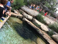 Jacobs well swimming hole