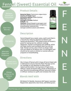 Fennel Essential Oil, Essential Oil Uses, Young Living Essential Oils, Plant Therapy Essential Oils, Foeniculum Vulgare, Diffuser Blends, Natural Medicine, Herbal Remedies, Aromatherapy