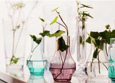 Budget-friendly vases for a wedding or large party where many are needed.