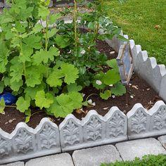 Gresk romersk flora-kantstein - Rødstua Design AS Stepping Stones, Outdoor Decor, Flora, Design, Home Decor, Ideas, Stair Risers, Decoration Home, Room Decor