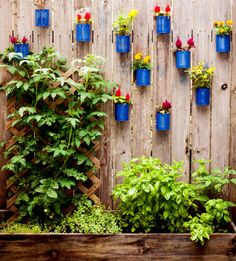 When you run out of yard space for blooms in a small outdoor space, look up. These spray-painted cans breathe life into a weathered fence. Grow herbs in your hanging gardens to make them functional and fashionable. Click through for more on this and other small patio decor ideas.