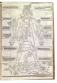 The Zodiac Man Fasciculus medicinæ Author: Ketham, Joannes de, 15th cent.