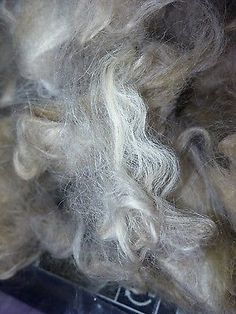 1oz suri x huacaya alpaca fleece washed and finger picked
