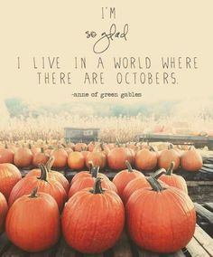 I can't wait for fall! Pumpkin patches, corn mazes, haunted houses, Halloween, sweatshirts and snuggles, rain, colors!!!