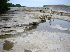A visit to the Devonian Fossil Gorge near Coralville Lake in Iowa City is a…