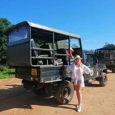 Safari, Vehicles, Car, Vehicle, Tools