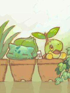 Grass type Pokemon ^-^