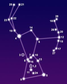 Orion, the Hunter, is visible from October through March in both hemispheres. This constellation was named after the hero of Greek mythology who was killed by Scorpius, the scorpion. Astrology Capricorn, Virgo Zodiac, Horoscope, Orion Mythology, Greek Mythology, Scorpio Star Constellation, Orion Tattoo, Star Constellations, Tarot Card Decks