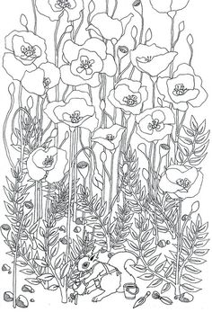 Poppy field and other lovely colouring Remembrance Day, Coloring Book Pages, Silk Painting, Printable Coloring, Line Drawing, Doodle Art, Colorful Flowers, Line Art, Art Lessons