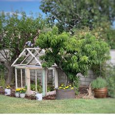 I've dreamt of having a huge greenhouse made of old window panes but the hubby didn't think it was a good idea being that we don't have a large backyard. Old Window Greenhouse, Small Greenhouse, Greenhouse Ideas, Old Windows, Antique Windows, Vintage Windows, Vintage Doors, Antique Doors, Old Window Panes