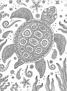 Turtle : Colorful Meditations Coloring Book By Stephanie Peterson Jones