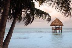 "http://pin.sanctuarybelize.com    The Sanctuary Belize ""office"" on our 6 acre private island."