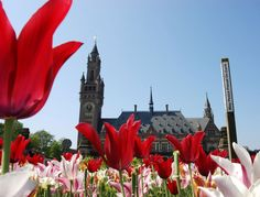 The Peace Palace in The Hague. © NBTC