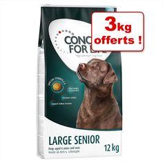 Animalerie  Croquettes Concept for Life pour chien : 12 kg  3 kg offerts !  Labrador Retriever Adult