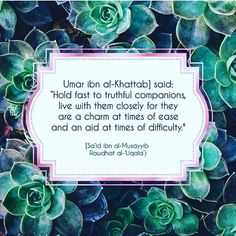 Untitled Abu Hanifa, Hadith, Islamic Quotes, Hold On, Sayings, Memes, Instagram Posts, Inspiration, Ideas