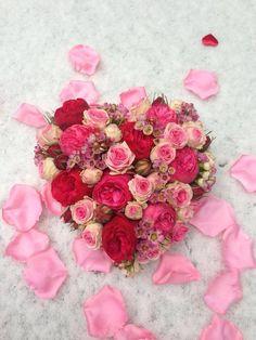 Roses by Menno Kroon
