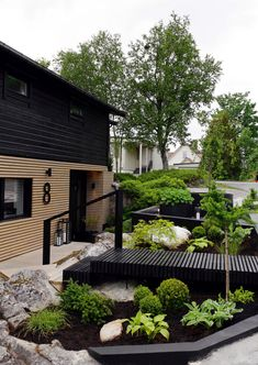 Front Garden Landscape, Landscape Design, Backyard Pool Designs, Backyard Landscaping, Japanese Garden Design, Lush Green, Dream Garden, Garden Planning, Garden Inspiration