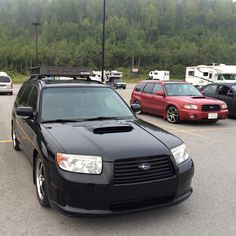 Husband's fozzy and red mine on back ground. Going to subiefestival 2015 on Québec