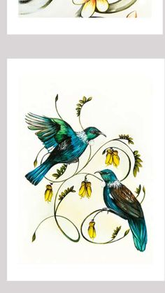 ❤️tuis Flying Bird Drawing, Bird Drawings, Tattoo Drawings, Nz Art, Art For Art Sake, Tui Bird, Maori Symbols, New Zealand Art, Bird Poster