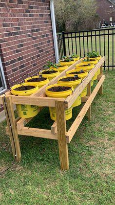 Garden Yard Ideas, Veg Garden, Diy Garden Projects, Lawn And Garden, Home Vegetable Garden Design, Garden Boxes, Diy Planters Outdoor, Outdoor Gardens, Building A Raised Garden