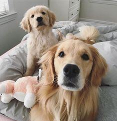 Piper and Finn ❤