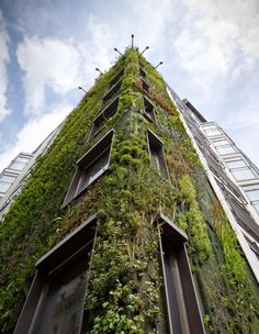 Patrick Blanc | Vertical Garden #green #architecture Another Vertical Garden. We like this too!
