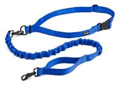 Hands free dog leash for running, skiing, snowshoeing, etc.