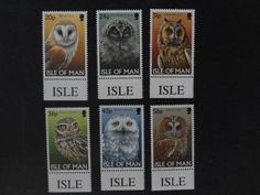Owl post stamps Isle of man.