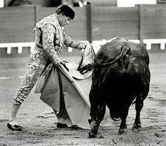¿Sabías que Curro Romero tomó la alternativa, tal día como hoy, en 1959 en Valencia?. Su padrino fue Gregorio Sánchez. ¿Cómo definirías al Maestro de Camas?