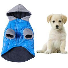Blue Pets Dog Warm Coat Pet Dog Puppy Cotton Thermal Jackets for Pets Winter Outdoor Walking Running Training Wear // FREE Shipping //     Buy one here---> https://thepetscastle.com/blue-pets-dog-warm-coat-pet-dog-puppy-cotton-thermal-jackets-for-pets-winter-outdoor-walking-running-training-wear/    #hound #sleeping #puppies