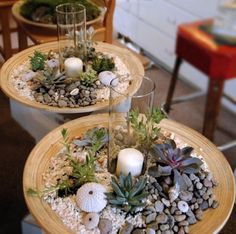 Very Good DIY Small Cactus Succulent Decoration Ideas - Page 33 of 67 Cactus Centerpiece, Table Centerpieces For Home, Small Cactus, Cactus Plants, Indoor Garden, Indoor Plants, Dough Bowl, Miniature Fairy Gardens, Craft Party