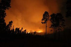Las Conchas Fire, New Mexico, 2011