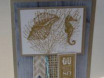 Grußkarte mit Seepferdchen