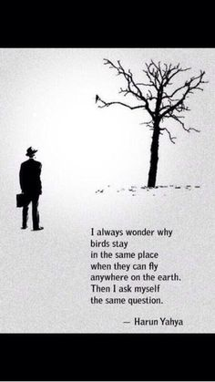 """""""I always wonder why birds stay in the same place when they can fly anywhere on the earth. Then I ask myself the same"""