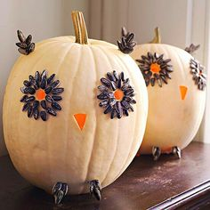 White owl pumpkins with sunflower seeds! Great halloween fall decor!