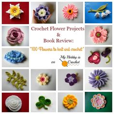 """Crochet Flower Projects and Book Review: """"100 Flowers to Knit and Crochet"""" by Lesley Stanfield on myhobbyiscrochet.com"""