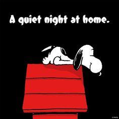 Peanuts Gang, Peanuts Cartoon, Charlie Brown And Snoopy, Snoopy Cartoon, Peanuts Comics, Peanuts Quotes, Snoopy Quotes, Snoopy Love, Snoopy And Woodstock