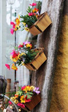 pretty flowers in baskets