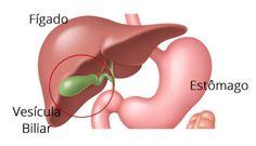 orgaos do corpo que da para viver sem vesicula biliar