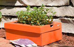 several articles about using cardboard in your garden (for planters, mulch, and compost)