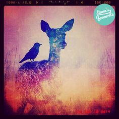 Via @ainchazakaria  #DianaPhotoApp #DianaPhoto #DianaApp #PhotoApp #doubleexposure #art #vintage #camera #photo #lomo #edit #artwork #deer #nature #animal