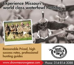 We are down to 8 two day combination speckle belly / Duck hunts in SE Missouri at the special group rate 5 hunters @ $100.00 per hunter/day