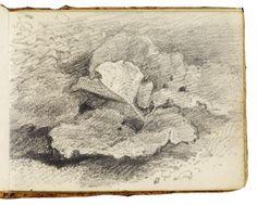 John Constable - Victoria and Albert Museum Drawing Sketches, Pencil Drawings, Art Drawings, Sketching, Gustav Klimt, Artist Sketchbook, Sketchbook Ideas, Sketch Pad, Plant Drawing