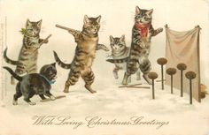 WITH LOVING CHRISTMAS GREETINGS  three personosed cats & two kittens throw sticks at coconuts